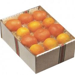 3285 - Gift Box Citrus Sampler